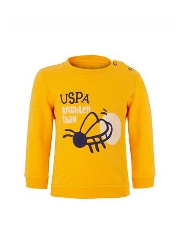 U.S. Polo Assn. 2 li Takım Sarı